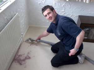 Carpet and Upholstery Cleaning in Dalton